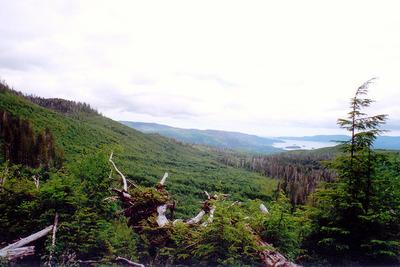 Mount Genevieve BC